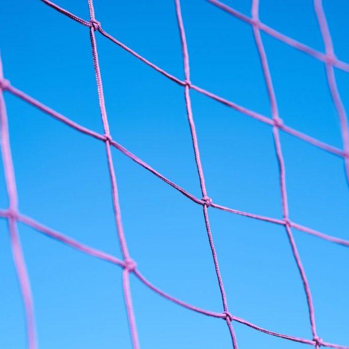 purple-volleyball-net-1552620